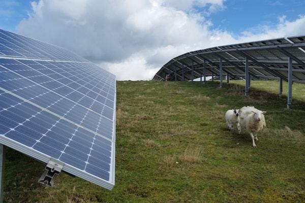 Momentum-Repowering-Solarplant-and-PV